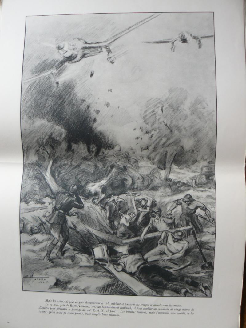 "3 séries de ""dessins de captivité"" P1090106-42b07c7"