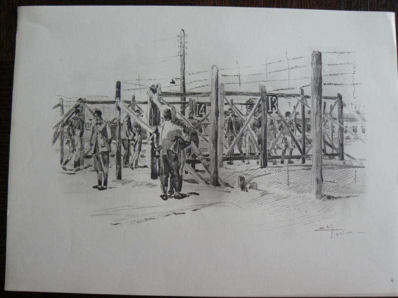 """3 séries de """"dessins de captivité"""" P1090063-42b0a39"""