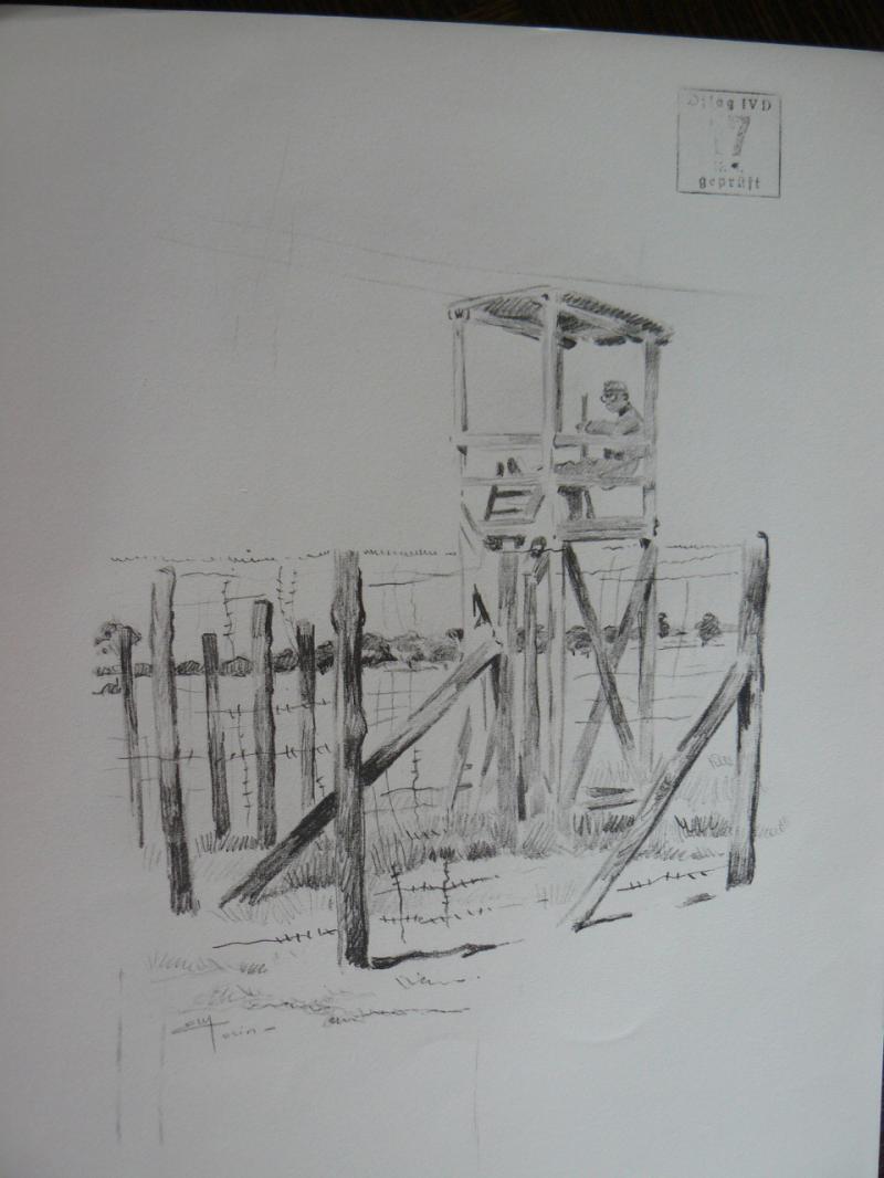 """3 séries de """"dessins de captivité"""" P1090067-42b0a5f"""
