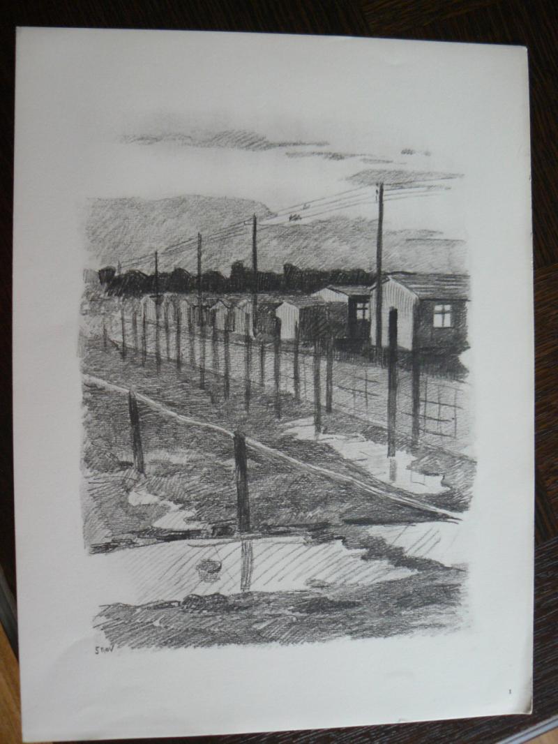 """3 séries de """"dessins de captivité"""" P1090060-42b0a19"""