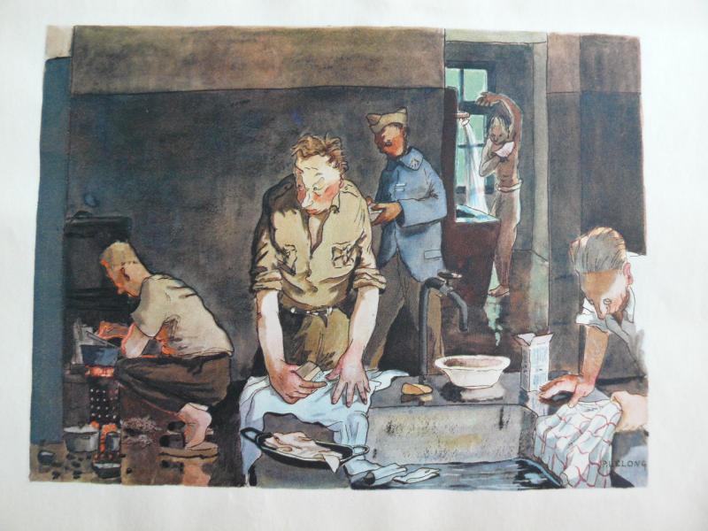 """3 séries de """"dessins de captivité"""" P1090086-42b081d"""