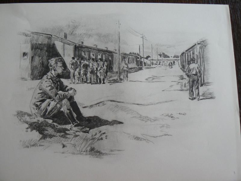 """3 séries de """"dessins de captivité"""" P1090062-42b0a31"""