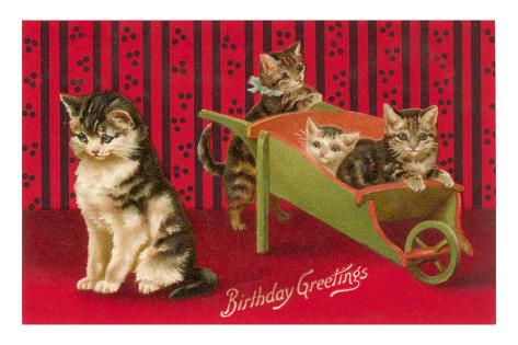 Happy Birthday to You ! - Page 19 Birthday-greetings-cats-with-wheelbarrow