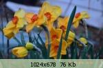 Весна идет весне дорогу 51c7da6556ece2fa564941f0e431d8a9