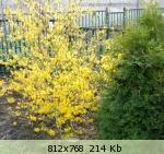 Весна идет весне дорогу - Страница 39 8fae7b225191da593e321dce4eb7216f