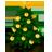 Les Noël du CPAF
