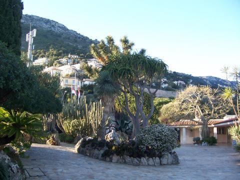 Quelques Jardins  5014533_l
