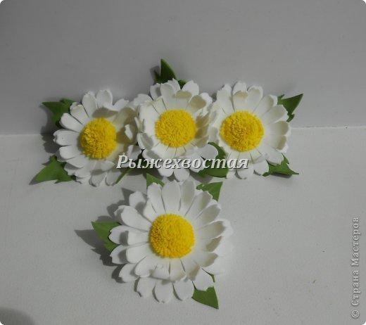 Фоамиран Dscn3906