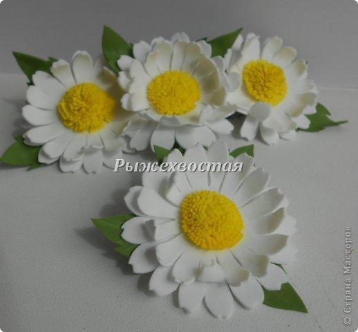 Фоамиран Dscn3909