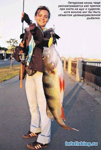 Ловля рыбы в Неве 1293959300_13