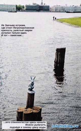 Ловля рыбы в Неве 1293959337_11