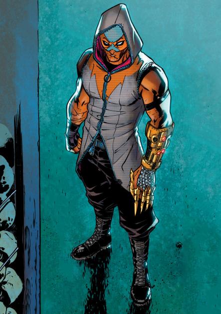 La Chute de la Maison des Hiboux [Privé] Raptor-DC-Comics