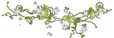 Галерея выпускников Цветущий луг 14928145.1558453730