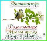 """Фотоконкурс """" Мы на время забудем работу, ведь идем мы на фотоохоту!"""" Vesennyayafotoohotagolosovanie.1496499017"""