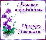 "Галерея выпускников орхидея ""Аметист"" Anons.1520891632"