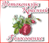 """Фотоконкурс """"Красный"""" Fotokonkurskrasnyjgolos.1458470284"""