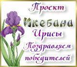 """Проект """"Икебана"""" Ирисы. Поздравляем победителей Pozdrav.1587390823"""