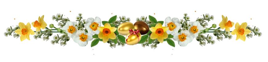 Галерея выпускников яйцо Нарциссы Razdeliteldlyayaicsnarcissami.1529235294