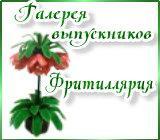 Галерея выпускников Фритиллярия Ryabchik.1592069306