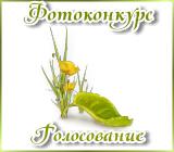 Фотоконкурс «Весна на ладошке». Vesnanaladoshkegolosovanie.1458469838