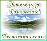 """Фотоконкурс """"Вестники весны"""" Vestnikigolos.1515440661"""