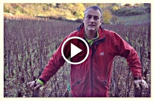 Un viticulteur bio poursuivi pour avoir refusé l'usage d'un insecticide Video_viticulteur_bio