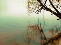 Liqeni i zemëruar (Tregim) 200-150_1356427253