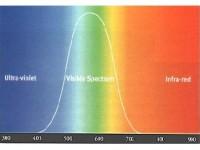 [Shkenc] Fakt shkencor: Pse gomarët shohin djajtë ndërsa gjelat e fushës shohin Engjëjt? 200-150_1391595474