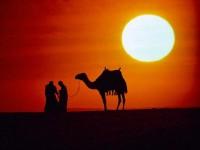 [Tregim islam] Fshatari në shkretëtirë 200-150_1431434359