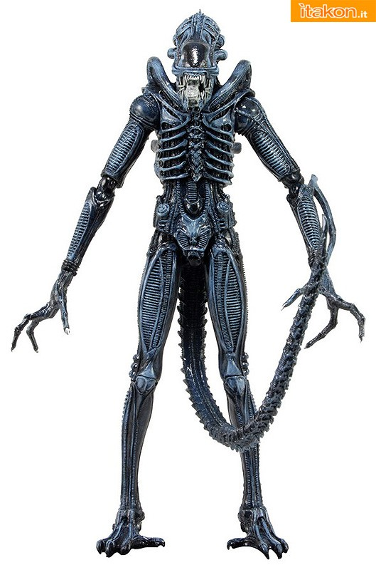 [NECA] Series 4 - Aliens: Ellen Ripley e Dallas Arthur 51394_BLUE-WARRIOR