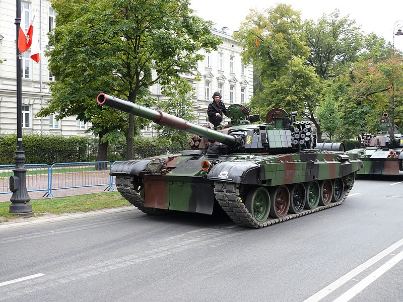 Les Forces Armées Polonaises/Polish Armed Forces P1060837