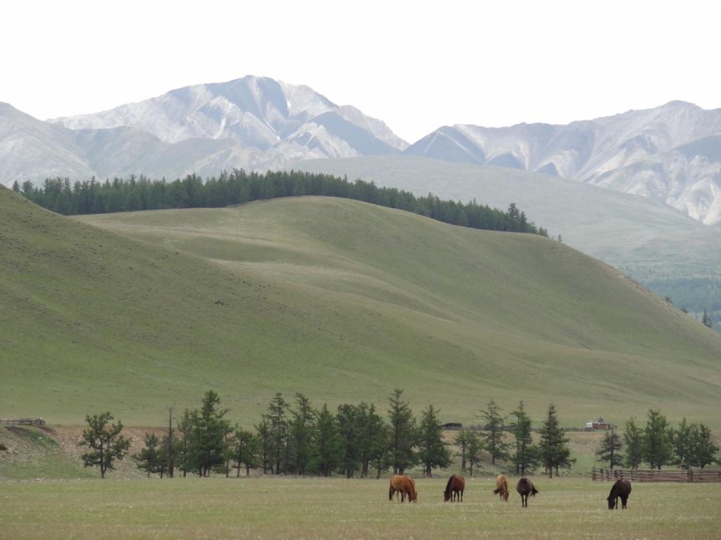 Монголия 0538529001422369684