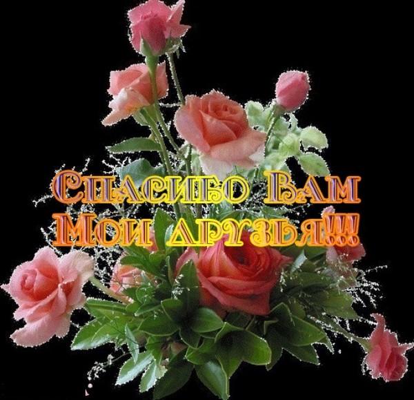 Поздравляем с Днем рождения Иовлева Анатолия Дмитриевича 0460644001428473846
