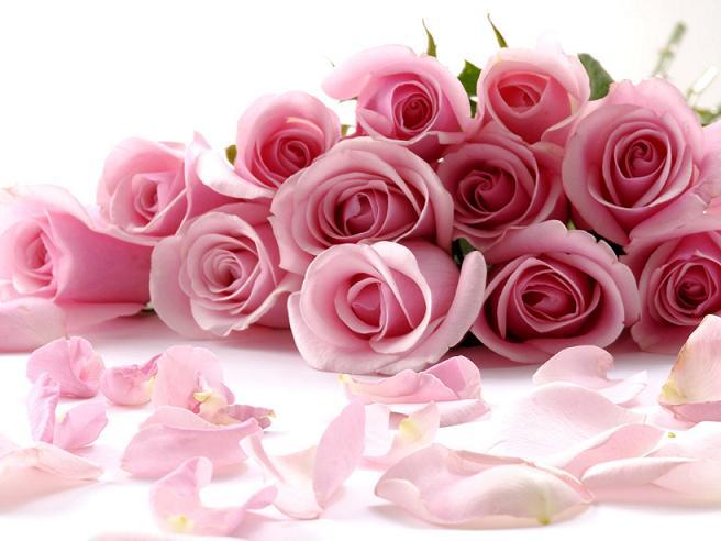 Поздравляем с днем рождения Соломахину Ирину Александровну 0578628001429449707