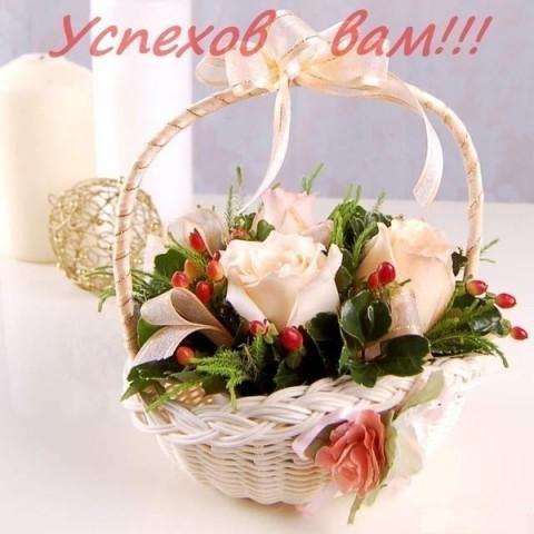 Портфолио Огай Людмилы Викторовны 0328298001454749429