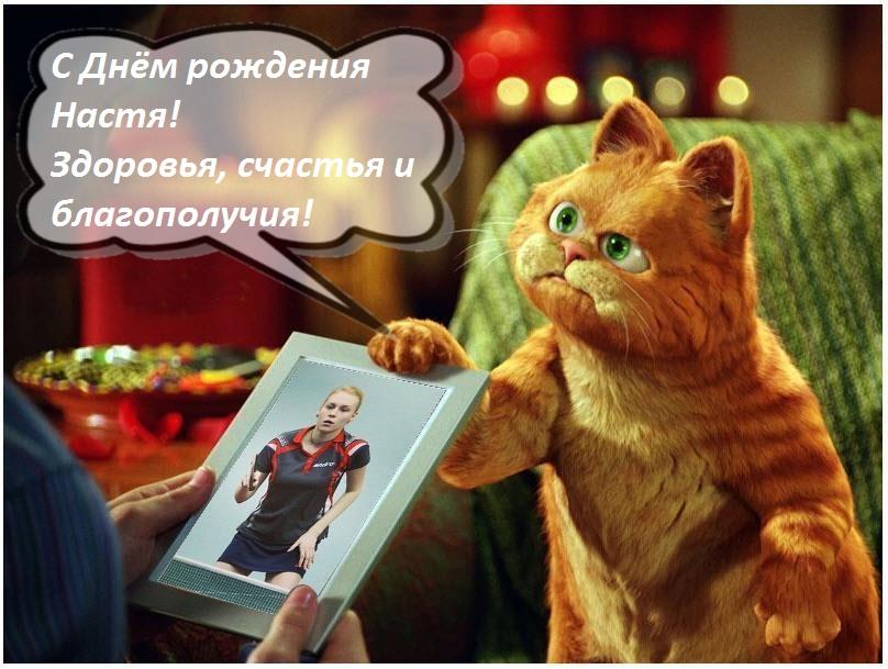 День рождения Анастасии Волковой/Кротовой!  0850023001464322866