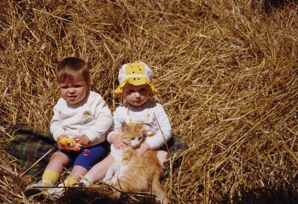"""Фотоконкурс """"Кошки на картошке"""" 0900170001464616897"""
