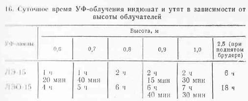 Птицеводы Волгограда и Волгоградской области - Страница 3 0157256001479826223