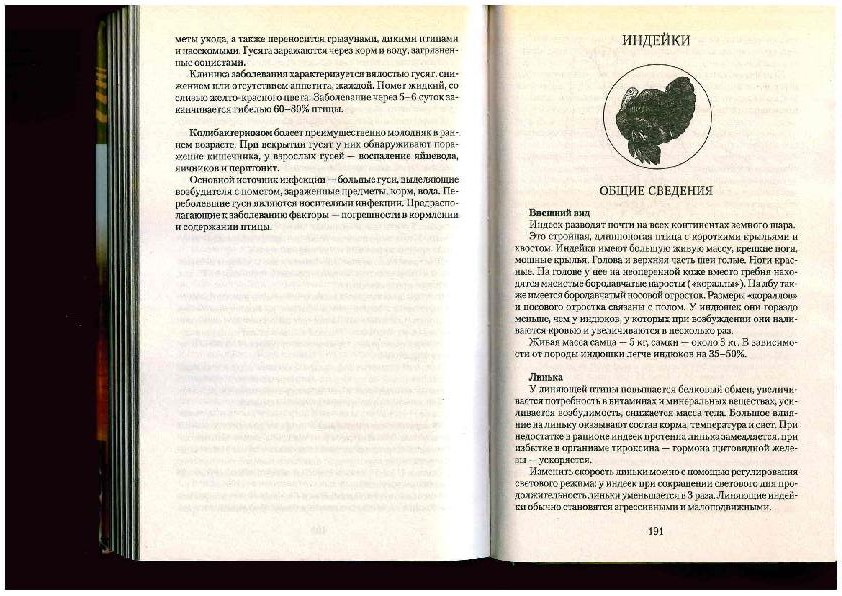 Заповедные места Боцмана - Страница 5 0202008001517214058