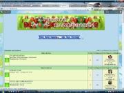 Долго грузятся странички форума, картинки и смайлики 0625230001370979068