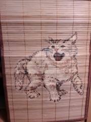 Кошки из бамбука и акрила 0980827001385703724