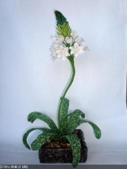 цветы из бисера - Страница 7 0123524001395164305