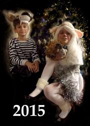 Фотопарад новогодних нарядов 0417265001419181563