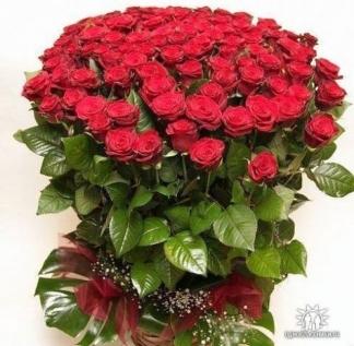 Поздравляем с Днем Рождения Ольгу (Oleyka) 0225317001454156569