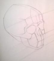 Рисуем обрубовку черепа 0804643001473252634