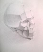 Рисуем обрубовку черепа 0946437001473252791