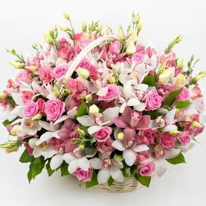 Поздравляем с Днем Рождения Оксану (oksanev) 0234869001484052301