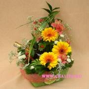 Поздравляем с Днем Рождения Зою (life0205) 0633469001485689391