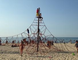 Лето-это маленькая жизнь. Фотоконкурс 0406430001497776320