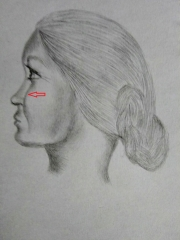Мои рисунки ручкой и карандашом. - Страница 4 0293820001578322078